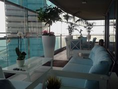 Ambientación de terraza en Barcelona #cespedartificialbarcelona #tarimaexteriorbarcelona #exteriorismo #diseñoexterior #terraza #decoterraza #cespedartificialgirona #tarimaexterior #tarimaexteriorsintetica #tarimasintetica #tarimaipe #jardin #diseñojardin