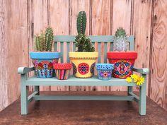 Petits pots et leurs cactus