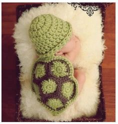 Crocheted baby turtle costume for new born pics <3