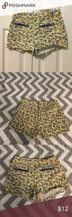 Beautiful Daisy Shorts Has 2 pockets on front, the material is stretchy, and the pattern give it a fun vintage look! Shorts