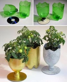 planters made from recycled plastic soda bottles. Reuse Plastic Bottles, Plastic Bottle Crafts, Recycled Bottles, Plastic Recycling, Waste Bottle Craft, Plastic Bottle Planter, Plastic Jugs, Plastic Pop, Recycled Crafts