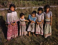 Seminole children at the Brighton Indian Reservation 1948 Seminole Indians, Cowboys And Indians, Native American Children, Native American Indians, Native Americans, Seminole Florida, Indian Reservation, Baby Faces, Ancient Egyptian Art