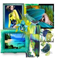 Its tropical by silviettatata on Polyvore