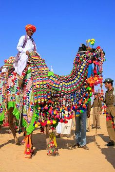 A camel fair in Rajasthan. #India #camels #TheGreatVacay