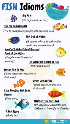 List of common animal idioms and phrases in English with meaning, ESL printable worksheets and example sentences. Learn can of worms meaning and other animal idioms to help your English sound more like a native speaker. Learn English Grammar, English Writing Skills, Learn English Words, English Language Learning, Teaching English, German Language, Japanese Language, Teaching Spanish, Spanish Language