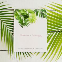 Your tropical beach wedding deserves a special touch at the reception - our new watercolor palm tree wedding guest book is a great addition to your beach decor! http://starboardpress.etsy.com