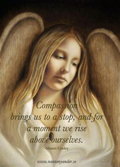 Compassion brings us to a stop and for a moment we rise above ourselves ~ Mason Cooley