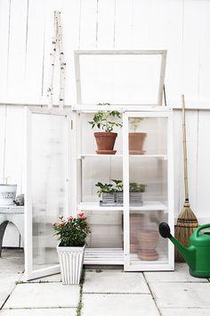 Greenhouse. By Smäm.
