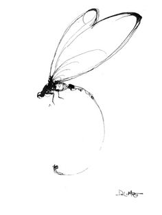 abstract dragonfly - Yahoo Image Search Results