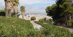 Blick vom Castell in die Stadt
