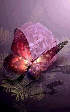 Mariposas y flores encontradas en la web.