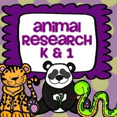Animal Research Kindergarten and First Grade Library Research, Library Skills, Research Skills, Library Lessons, Research Projects, Library Ideas, First Grade Classroom, Kindergarten Classroom, Future Classroom