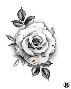 Dm or email for availability 🗓 rose tattoos, horticult White Rose Tattoos, Rose Flower Tattoos, Flower Tattoo Designs, Tattoo Roses, Rose Tattoos For Women, Floral Tattoos, Rose Drawing Tattoo, Tattoo Design Drawings, Tattoo Sketches