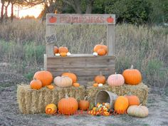 Pumpkin Stand Photography Prop...instead of writing on the booth use banners removable letters to change with the seasons i.e. kisses 5 cents for valentines day or merry christmas/happy holidays/let it snow for winter or lemonade stand for summer