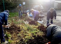 Community gardens are more likely to be successful with some basic tools and equipment. Here's some suggestions to to get you started. Basic Tools, Allotments, Essentials, Gardens, Community, Tips, Outdoor Gardens, Garden, House Gardens