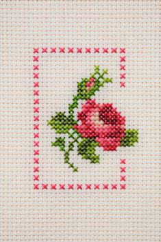 Simple Cross Stitch, Rose Embroidery, Cross Stitch Patterns, Cross Stitch Owl, Cross Stitch Rose, Herb, Cross Stitch Embroidery, Stitches, Men's