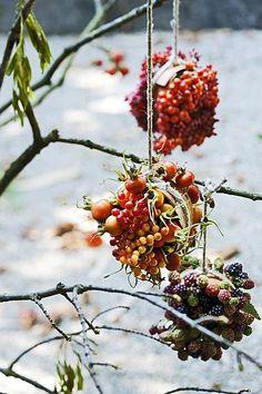 Wonderful #bird feeders for the winter.