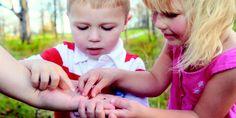 Enfants découvrant des coccinelles