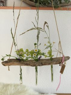 Decorative objects – driftwood driftwood vases – a unique product by Alpen-Dog on DaWanda – Wood crafts – Ansicht Diy Crafts To Do, Beach Crafts, Wood Crafts, Vases, Deco Floral, Diy Garden Decor, Decorative Objects, Amazing Gardens, Plant Hanger