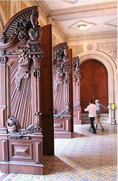 WOW these doors are gorgeous