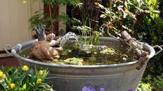 - The new mini pond – pictures and photos Garden Art, Garden Plants, Terrarium, Mini Pond, Home Art, Sweet Home, Flowers, Pictures, Photos
