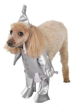 $9.33-$18.99 - Tin Man Dog Costume - Large - Wizard of Oz - Tin Man (Tinman) Dog Halloween Pet Costume Size Large includes: Outfit and hat. http://www.amazon.com/dp/B001AX0QAA/?tag=pin2pet-20