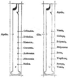 Le rameau compte trois branches : au centre, les consonnes (BCDFGKPQT), au nombre de neuf comme les Muses, à gauche, sept semi-vocales, qui sont les arts libéraux (LMNRSXZ), à droite, sept lettres (les voyelles et le H aspiré « laquelle pour ce quelle nest du tout reputee uraye lettre, est escripte en la plus basse fueille ») sont les quatre vertus cardinales et « les trois Graces de uenuste et de decente honestete». Le livre s'achève sur le triomphe d'Apollon et des Muses.