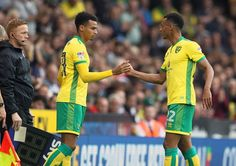 Six things we learned from Norwich City's victory over Cardiff at Carrow Road