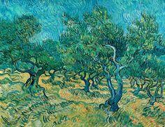 Bosquet d'oliviers | LASKO