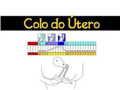 Coletor Menstrual - Altura do colo do útero - Blog Juba de Leoa por Vivi Najjar