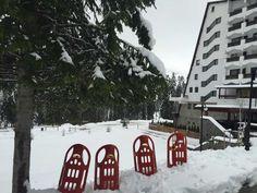Winter Hotel Pestera