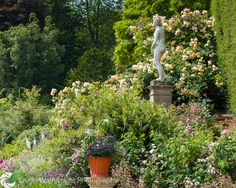 A classical statue is surrounded by tumbling roses, clematis and ferns on the Orangery terrace.