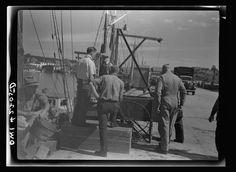 Gloucester, Massachusetts. Unloading fish Photographer Howard Liberman Created September 1942