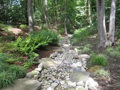 Water drainage landscaping