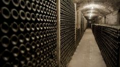 """Delfí Sanahuja: """"Oenologists have to make wine more accessible to people"""" 