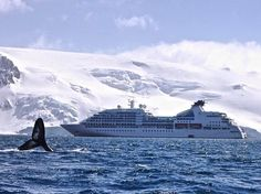 The Seabourn Quest takes on Antarctica. Photo courtesy of seabourncruise on Instagram.