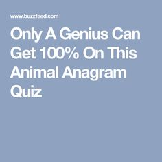 Only A Genius Can Get 100% On This Animal Anagram Quiz