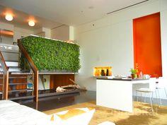 Dreamy Flowerbox Duplex Boasts Indoor Fish Pond, Vertical Garden and Transforming Furniture