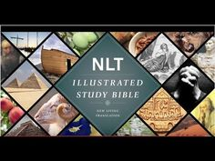 Open Your Eyes to the Beauty of Scripture with the Illustrated Study Bible
