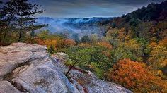 Misty fog rise out of Conkle's Hollow in the Hocking Hills region of Ohio. Mountain Photography, To Go, Mountains, Landscape, Fall, Places, Painting, Travel, Image