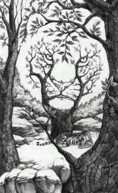 Take a look at this amazing The Sleeping Tiger Optical Illusion illusion. Browse and enjoy our huge collection of optical illusions and mind-bending images and videos. Optical Illusion Paintings, Optical Illusions Pictures, Illusion Pictures, Illusion Drawings, Art Optical, Amazing Optical Illusions, Illusion Kunst, Illusion Art, Hidden Pictures