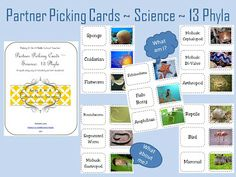 Science Partner Picking/Matching Cards from Making It As A Middle School Teacher.  http://www.makingitteacher.com