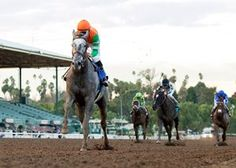 Unique Bella Romps in Santa Ynez  https://www.racingvalue.com/unique-bella-romps-in-santa-ynez/