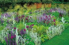 City Gardening Silver plus chartreuse plus magenta plus lavender. I need more artemisia. Lambs ears get too rampant for this look - When it's too cold to garden, retreat to a good read. Pattie Barron chooses her favourite new books. Plants, Beautiful Gardens, Plant Combinations, Planting Flowers, Border Plants, Gardening Books, Flowers Perennials, Urban Garden, Garden Planning