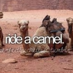 Ride a camel! Done it!!