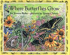 By Ryder, Joanne Where Butterflies Grow This book follows the early stages of a butterflies life, told from the viewpoint of a butterfly. Lift up a leaf and imagine…