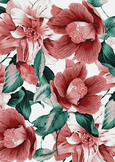 Home Decoration Ideas: Flower Wallpaper - If You Don't Have A Garden Or You Don't Have A Green Thumb, This Is Your Chance To Surround Yourself With Some Easy To Care For Beautiful Greenery.