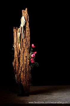 Ikebana Belgium added 42 new photos to the album: Sogetsu Azalea Exhibition Ikebana Arrangements, Creative Flower Arrangements, Ikebana Flower Arrangement, Floral Arrangements, Japanese Plants, Japanese Flowers, Art Floral, Floral Design, Love Flowers