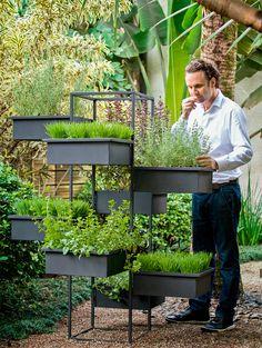 Quer uma horta na varanda do apartamento? Esta estrutura com vasos é uma boa pedida. Confira também as propriedades de quatro espécies de ervas