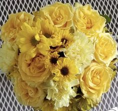 Yellow Carnations, Mini Carnations, White Carnation, Peach Flowers, Cream Flowers, Colorful Flowers, White Flowers, Bulk Flowers Online, Flowers For Sale
